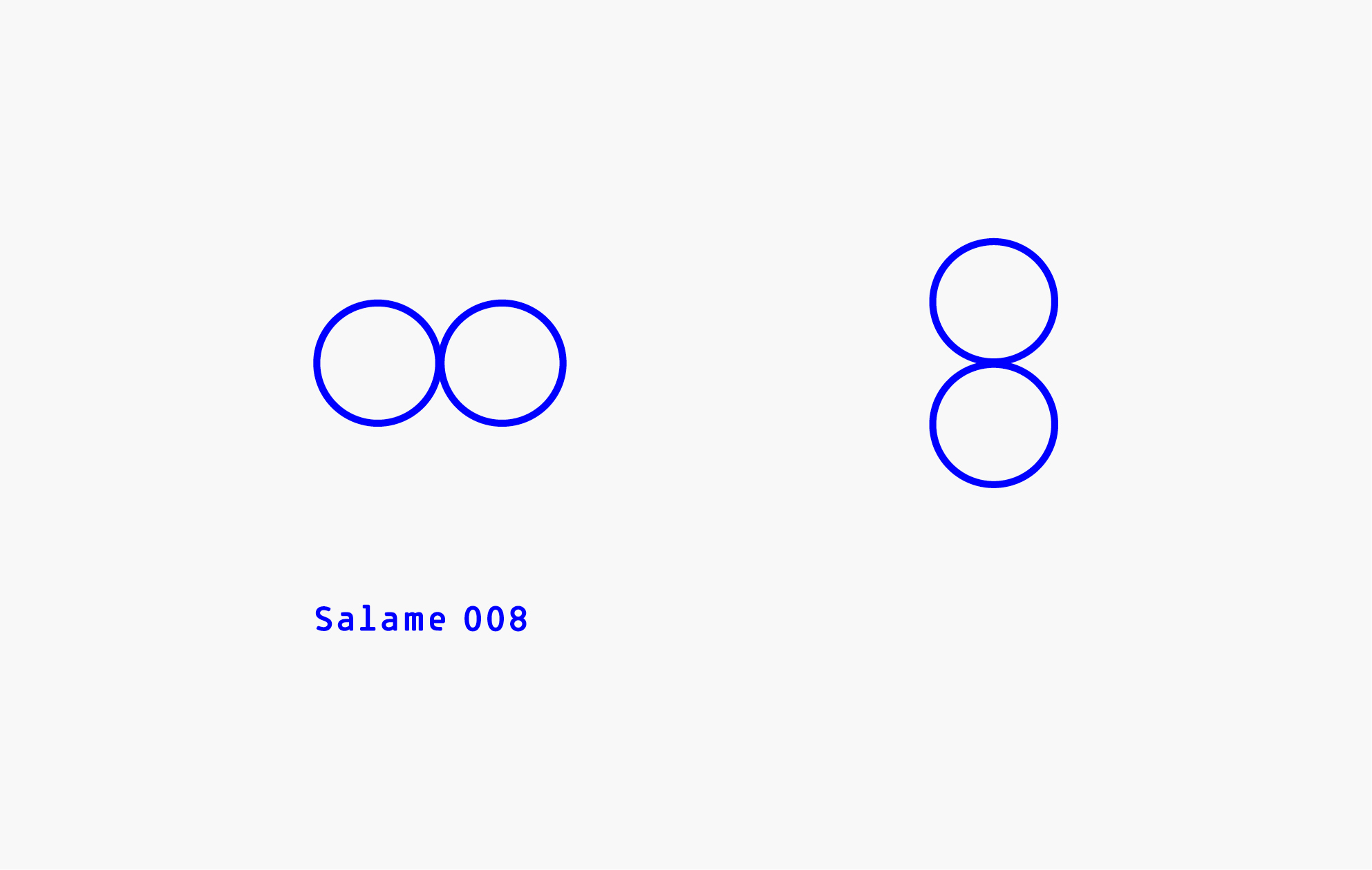 SALAME 008